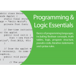 ICT Programming & Logic Essentials