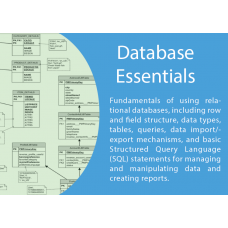 ICT Database Essentials
